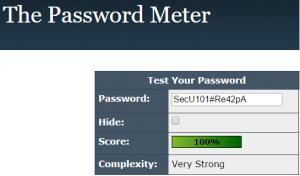 The Password Meter